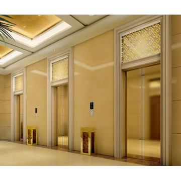 Mrl Commercial Gearless Vvvf Passenger Home Lift Hotel