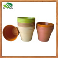 Biodegradable House Flower Plant Pot