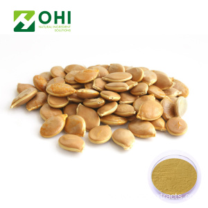 Pumpa Seed Extract (Cushaw Seed) Pulver