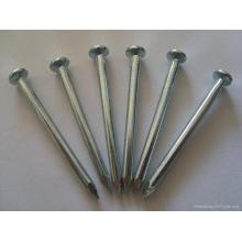 Clou de béton / clous en acier galvanisé