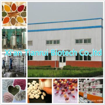 Onion Powder/Onion Extract Powder
