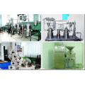 Producto femenino Labisia Pumila Extract / Kacip Fatimah Extract