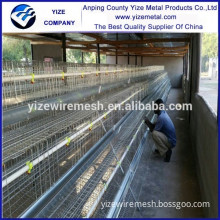poultry control shed equipment/poultry equipment for broiler/poultry abattoir equipment