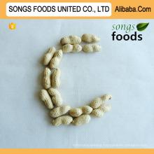Healthy Food Seaflower Peanut Sell
