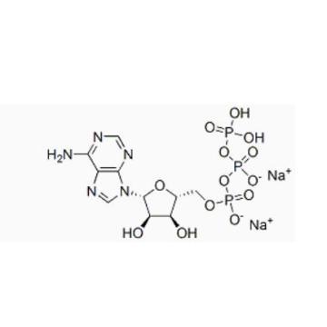 Adenosine 5'-triphosphate Disodium Salt CAS 987-65-5