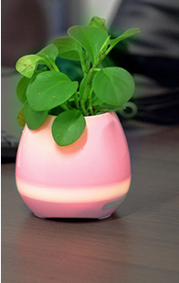 Mini Bluetooth speaker with flower pot