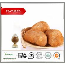 Hohe Qualität 100% natürliche organische Affenkopf Pilz Extrakt, Hericium Erinaceus Extrakt Pulver