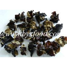 1,5-2 centímetros de alta nutrição chinês nuvem orelha negra fungo madeira orelha