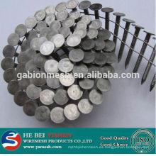Clavo del alambre de Anping Yishen / clavo de la bobina / clavo galvanizado del tejado del paraguas (venta caliente)