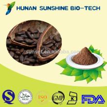 Poudre sèche de poudre de cacao de matières premières de nourriture et de boisson de poudre