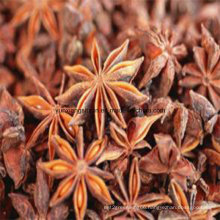 Star Anise Good Quality