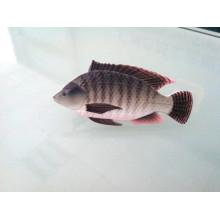 Pince à cravate de forme de poisson, insigne personnalisé (GZHY-LDJ-029)