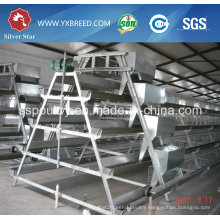 Silver Star Chicken Layer Cage / Poultry Layer Cage / Battery Layer Cage System