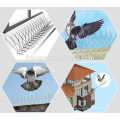 Stainless steel anti bird control with plastic pedestal bird spike