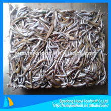 we mainly supply frozen sand lance with good quality