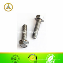 Stainless Steel Hex Serrated Flange Screw