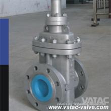Válvula de compuerta de acero