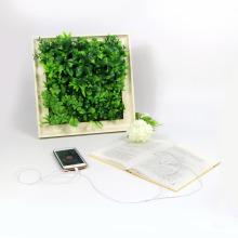 Designer home decor 25*25cm frames artificial wall garden art for wall