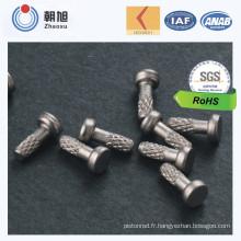 Chinoise en acier inoxydable en acier inoxydable rivet à haute précision