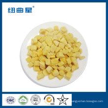 Beliebte chinesische Instant Food gefriergetrocknete Mango