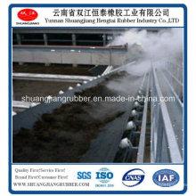 Top10 chinesische Fabrik von kältebeständigen Förderband (-50 Grad)