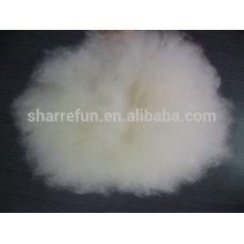 Fibra de cabra blanca de cabra blanca natural depilada mongol fino 100% puro con SGS
