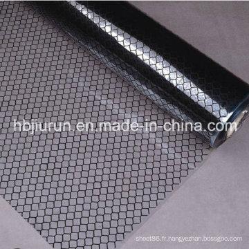 Rideau transparent de bandes de PVC antistatique de grille