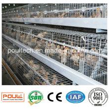 Автоматические оцинкованные клетки для птенцов