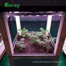Indoor incense planting box