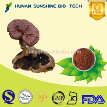 Organic Herbal Sex Power Product Mushroom Extract for Sex Increase Medicine