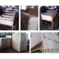 Интерьер твердой древесины teak главные двери дизайна (СК-W136)