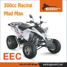 300cc Atv Безумный Макс гонки утверждение ЕЭС
