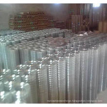 Galvanized, PVC Coated Welded Wire Mesh