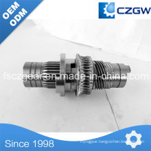 High Precision Customized Transmission Gear Worm Gear for Various Machinery