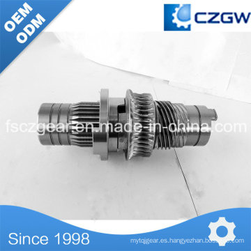 Engranaje del gusano del engranaje de la transmisión de la precisión de la alta precisión para la diversa maquinaria