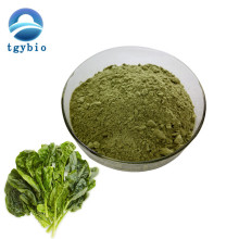 Quality Chinese Products Natural organic Spinach Powder