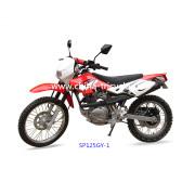 125cc Fashion Dirt Bike with High Quality (SP125GY-1)