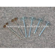 Common iron nails(10 years' factory)