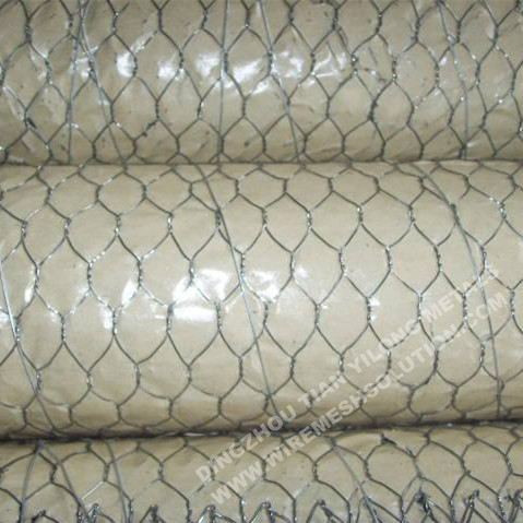 Chicken Wire Netting Galvanized for Residential