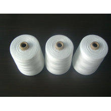 Polyester Sewing Thread 40S/2