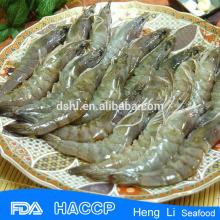 Frozen vannamei Shrimp