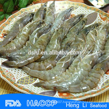 HL002 hot sale penaeus vannamei shrimp