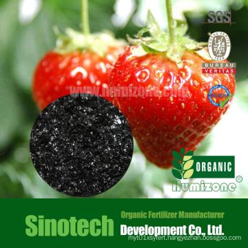 Humizone Foliar Spry Fertilizer: 90% Potassium Humate Flake (H090-F)