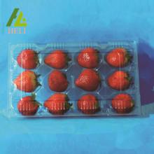 Conteneur en plastique d'emballage de fraise de 12 compartiments
