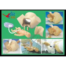 Fortgeschrittene Lieferung Integrierte Fertigkeiten Geburtshilfe, Hebammenmodell