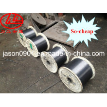 Steel Wire, Stainless Steel Wire, Oil Temper Steel Wire