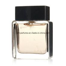 Parfum d'homme mûr de conception d'usine