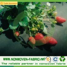 Tela no tejida de los PP para el control / Weed Weed de la agricultura