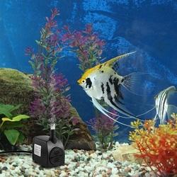 1.8m Hmax Fish Tank Water Pump