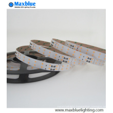 Hot-Selling Good Quality with Moderate Price 2835 140LEDs/M LED Strip